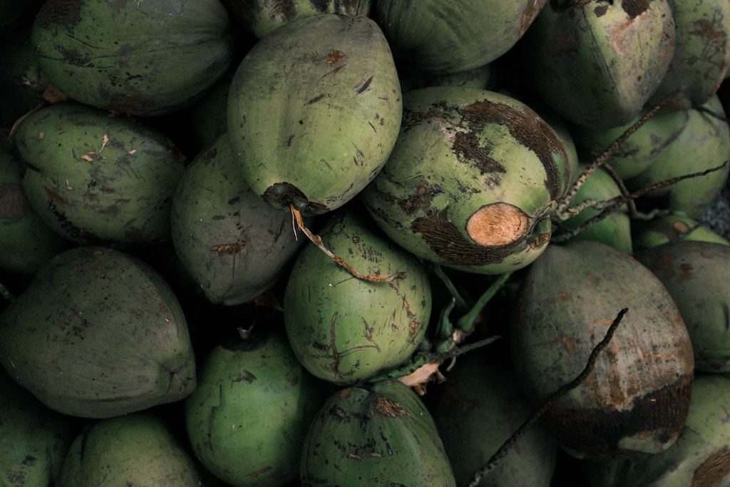 8 Reasons You'll Love the Health Benefits of Coconut Water