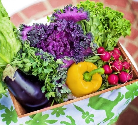 Colorful vegetables.