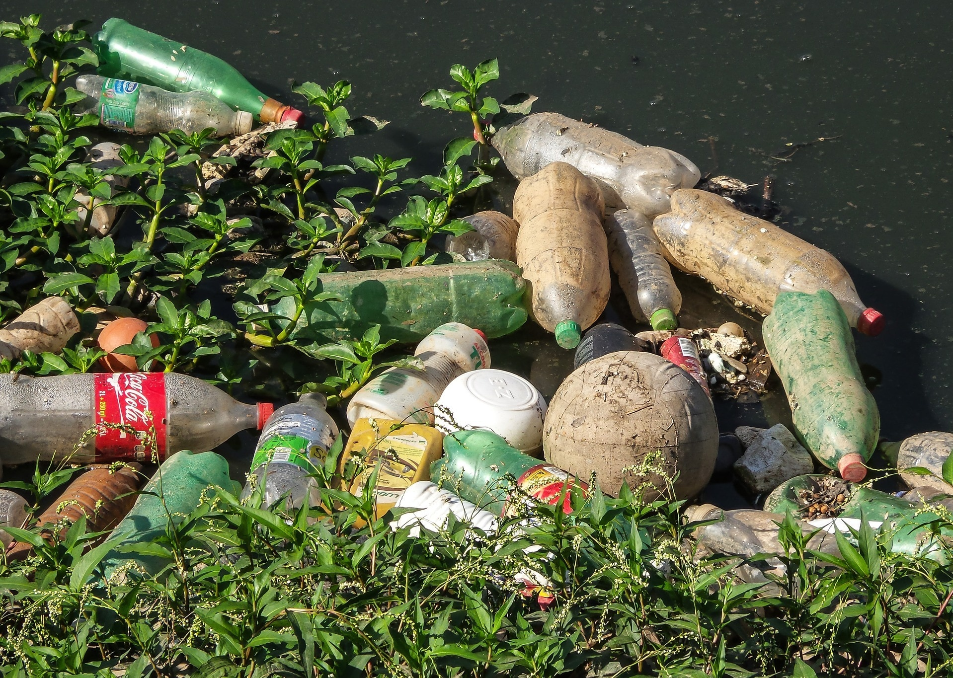 plastic bottle trash washed up on riverbank
