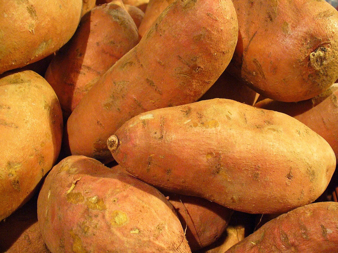 Sweet potatoes can be a sweet and healthy part of a holiday meal