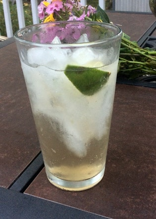 Juniper Tonic Mocktail