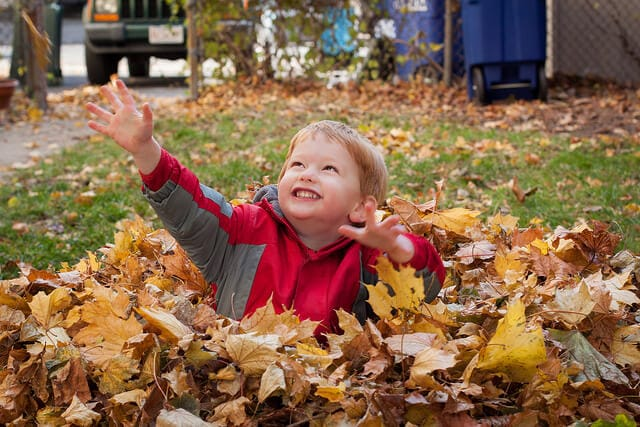 Jumping in leaves might not be work, but it is a workout.