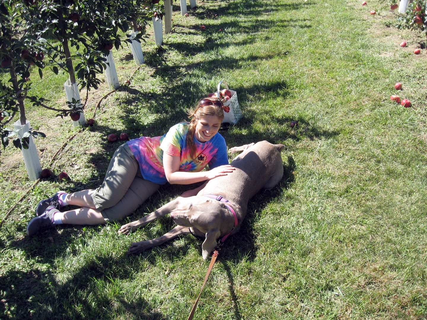 Angela and her dog relax in the apple orchard