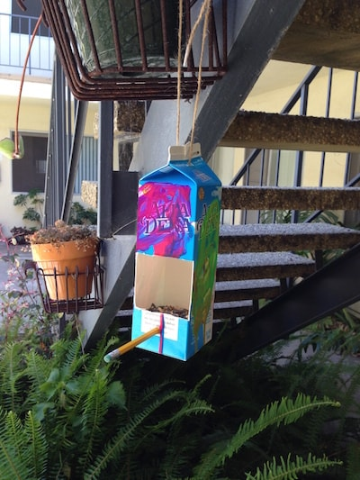 A bird feeder made of an old milk carton.